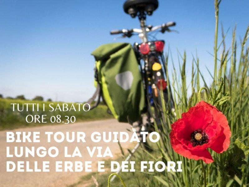 Bike tour lungo La Via delle Erbe e dei Fiori